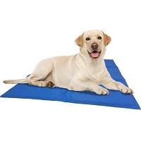 @Pet Koelmat Hond - XXL - Blauw - 120 x 80 cm