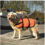 8. Beeztees Veiligheidsvest zwemvest voor honden