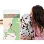 2. Tractive GPS Tracker Systeem Voor Hond