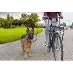 3. Fietsbeugel voor hond - Hondenriem - Hondenstang