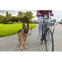 Fietsbeugel voor hond - Hondenriem - Hondenstang