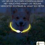 1. Professor Q Led Halsband Hond Usb Oplaadbaar