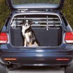 1. Trixie Auto veiligheidsrek